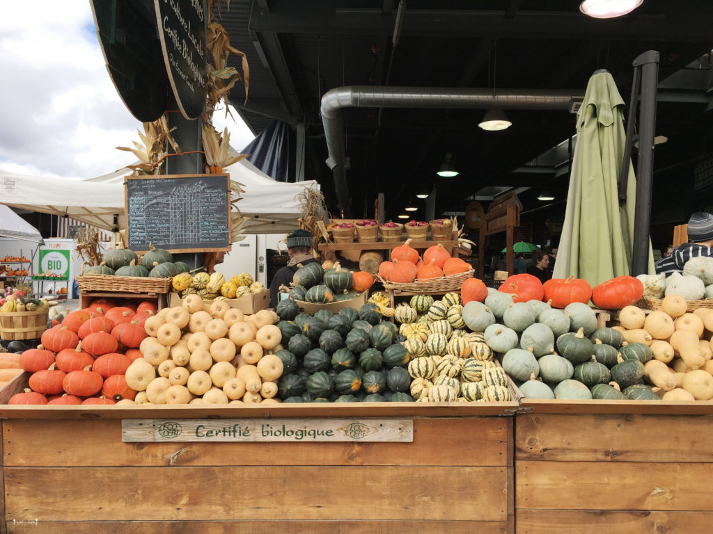 Jean Talon Market Pumpkins